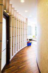 Modern Hallway interior.