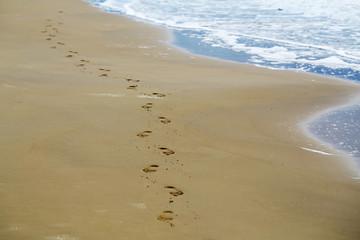 Feet prints on sea beach