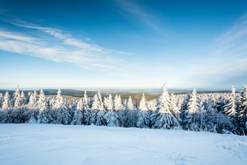 Thüringer Wald - Schneekopf