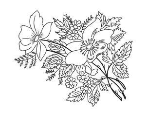 contour drawing flowers branches black on white