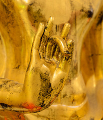 Hand of the golden buddha