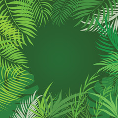 Vector tropical jungle background with trees and leaves.