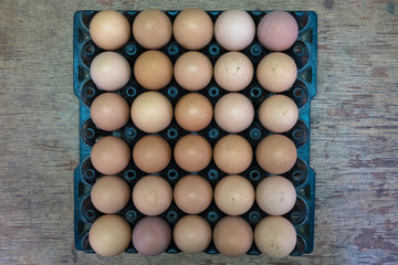 Egg chicken farm,selection focus.