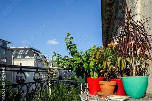 blumen und kr uter auf einem balkon in der stadt imagens e fotos de stock royalty free no. Black Bedroom Furniture Sets. Home Design Ideas