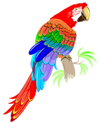 Illustration of parrot siting on the branch, vector cartoon image.
