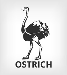 Ostrich vector black icon logo illustration