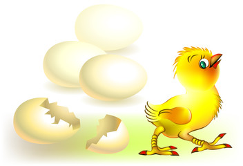 The chicken came out of the eggshell, vector cartoon image.