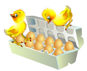 Two chickens sitting on the box with eggs, vector cartoon image.