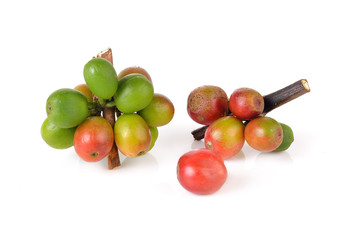 Coffee cherry isolate on white background