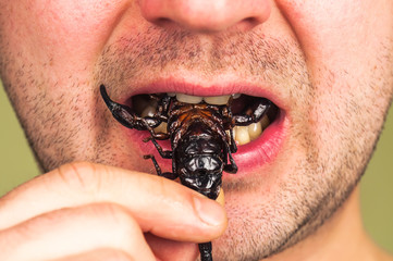 man eats a scorpion