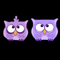 Funny cute animal, owl. Owl vector illustration eps 10