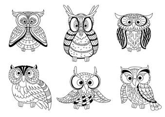 Cartoon cute outline owls and owlets birds