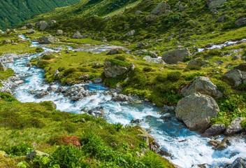 Wall Mural - Scenic Alpine River