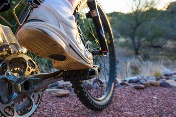 Mountain Biker Ready to Embark on Adventure