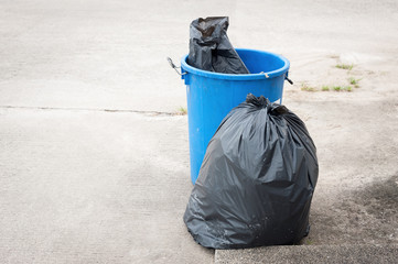 the Green bin and Black garbage bags