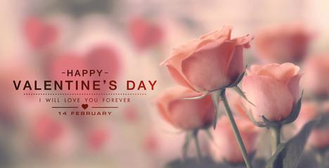 Happy valentine day, fine daisy color tone design, Blur and Select focus background