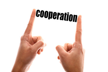 Smaller cooperation concept