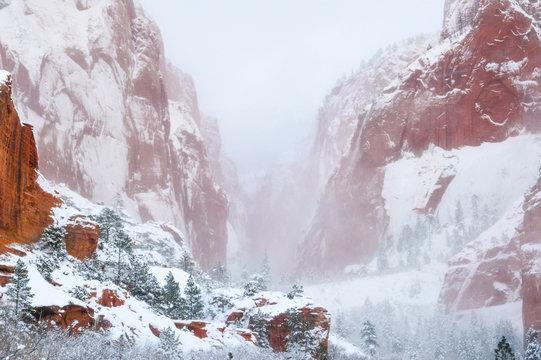 Kolob Canyon Snow Storm