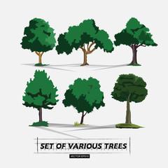 set of tree - vector