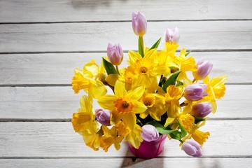 Fototapete - Tulpen (Tulipa), und Narzissen (Narcissus), Osterglocken, gelb,