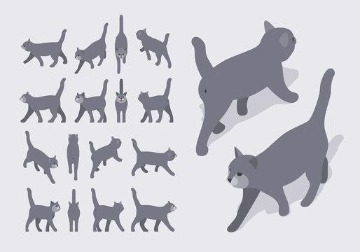 Isometric gray walking cat