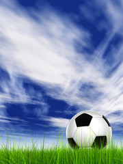 Conceptual 3D soccer ball in field grass with a  sky background