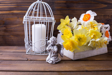 Decorative angel,  spring white and yellow  daffodils  flowers a