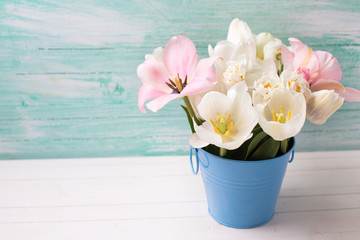 Spring white narcissus and pink tulips in bucket
