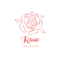Rose linear style