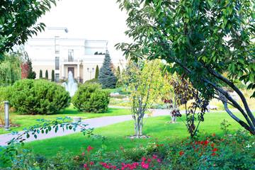 Fototapeta Park in the Summer