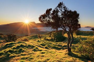 Soleil couchant à la Plaine des Cafres.