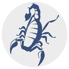 Scorpion, vector icon