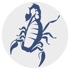 Scorpion, vector icon