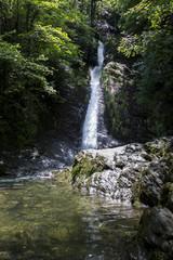 Dartmoor - Devon - England