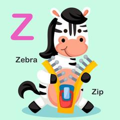Illustration Isolated Animal Alphabet Letter Z-Zip,Zebra
