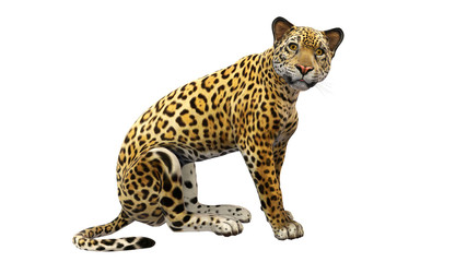 Jaguar sitting, wild cat isolated on white background Wall mural
