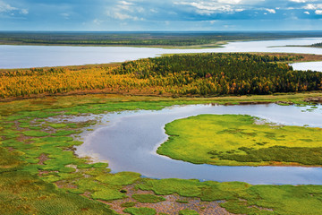 Tundra, aerial photography.