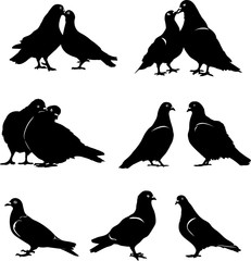 Pigeon, dove, pair, bird, vector, silhouette, black