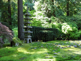 Japanese garden un summer light