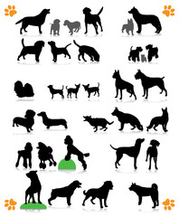 dogs silhouette part 2 of 3 : dog's breed