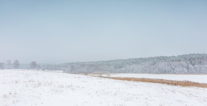 Winter field under cloudy gray sky