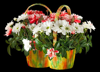 image of beautiful flowers in a basket on a black background
