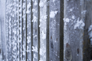 Frozen wooden fence surrounded by snow