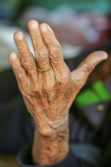 hand,The hands of a withered old woman wrinkles