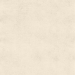 Vintage Bisque Cream Buckskin Parchment Paper Background