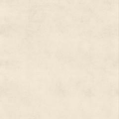 Vintage Bisque Cream Buckskin Parchment Paper Background