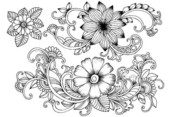Beautiful flowers for design in black and white or for coloring