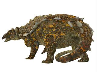 Gargoyleosaurus Dinosaur Tail - Gargoyleosaurus was an Ankylosaurus armored herbivorous dinosaur that lived in the Jurassic Age of Wyoming, North America.
