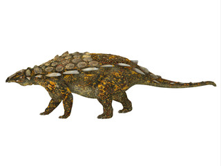 Gargoyleosaurus Side Profile - Gargoyleosaurus was an Ankylosaurus armored herbivorous dinosaur that lived in the Jurassic Age of Wyoming, North America.