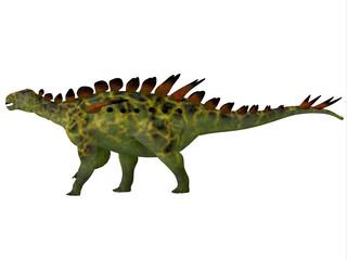 Huayangosaurus Side Profile - Huayangosaurus was an armored herbivorous dinosaur that lived in the Jurassic Period of China.